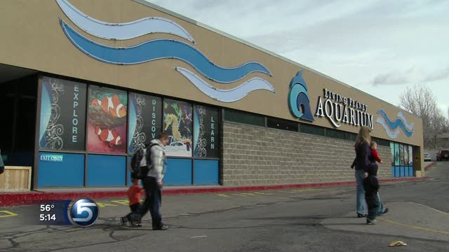 Living Planet Aquarium Will Move To Draper